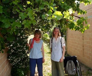 Sari ja Outi viiniköynnöksen alla